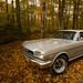Mustang Cars : 1966