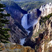 Yellowstone's Lower Falls,