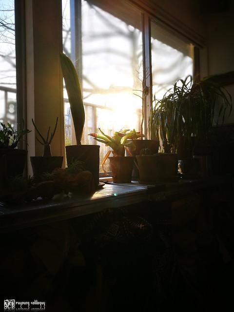 掌心的攝影課 IV | 008
