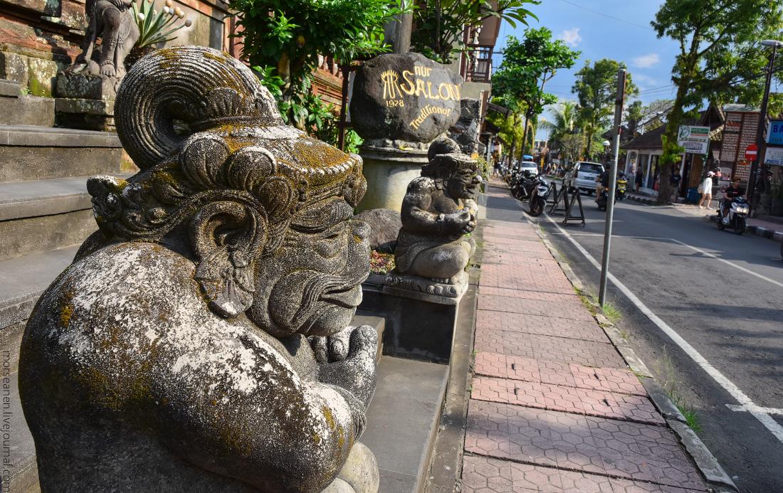 Bali-Ubud-(60)