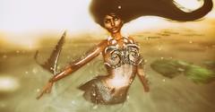 The Mermaid Grace