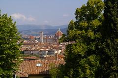 Firenze Panorama (2011)
