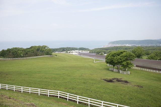 20180624 コスモヴューファーム 坂路コース / Cosmo View Farm