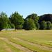 QPHS playingfields, 2018 Jul 08 -- photo 2