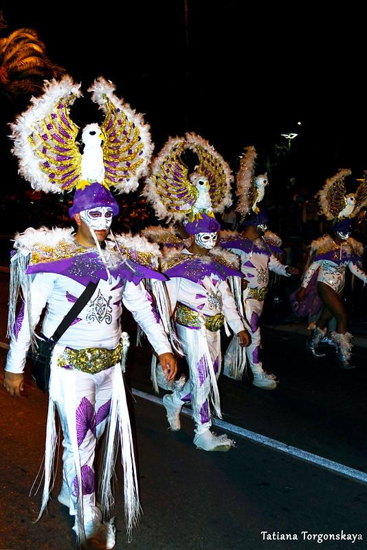 Карнавальная группа из Струмицы в Которе