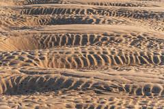 Waterside Beach Sand