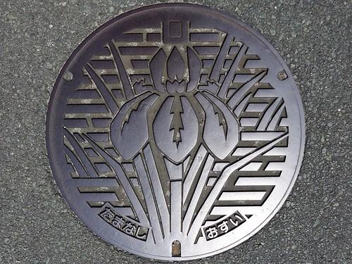 Tamana Kumamoto, manhole cover 2 (熊本県玉名市のマンホール2)
