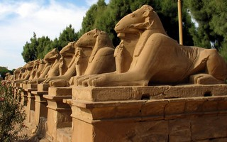 Alley of sphinxes