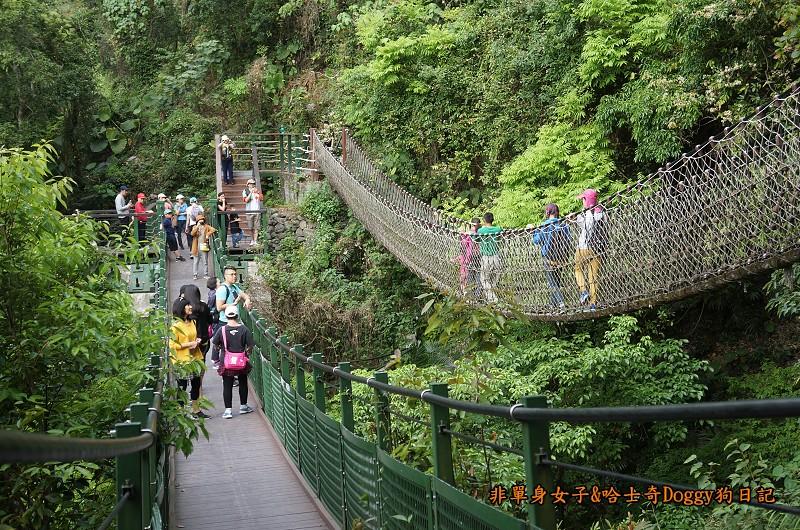 花蓮太魯閣國家公園10