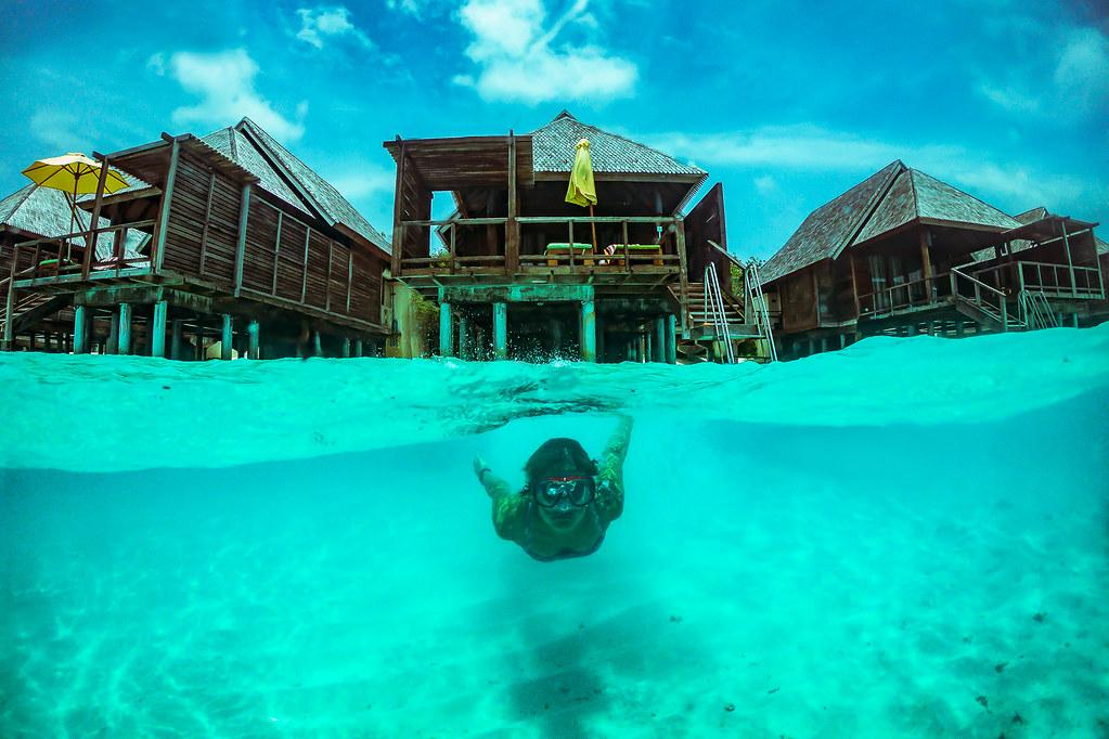 Underwater, Maldives picture
