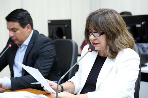 24ª Reunião Ordinária- Comissão de Orçamento e Finanças Públicas