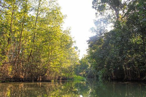 Río Arriba (65)