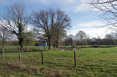 Neuillay-les-Bois (Indre) - Photo of Luant