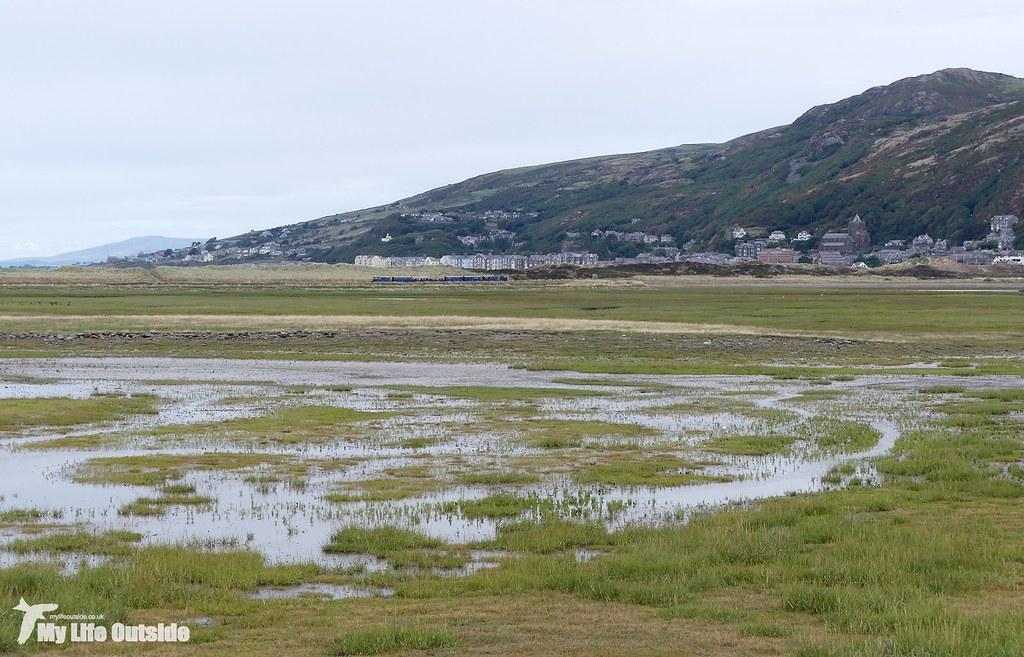 P1170751 - Mawddach Estuary