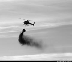 20180801_10 Helicopter liming the lake Stora Hällesvattnet where I cam