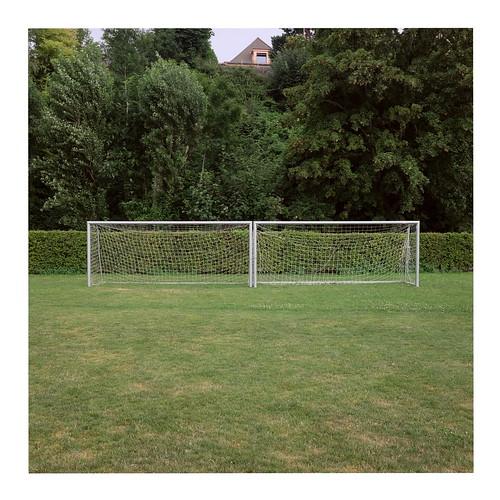 Goal #13