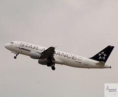 Lufthansa A320-211 D-AIPC taking off at DUS/EDDL