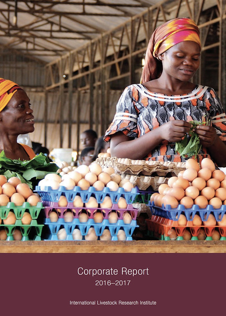 Rwandan women selling eggs to people visiting the Kimironko market in the country capital city, Kigali (photo credit: Shutterstock.com/Sarine Arslanian) All rights reserved.
