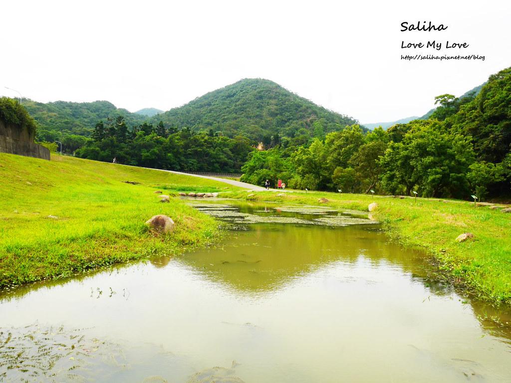 台北內湖一日遊景點推薦大溝溪親水公園 (37)
