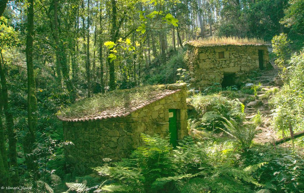 73.- Rota do Monte Aloia (671)