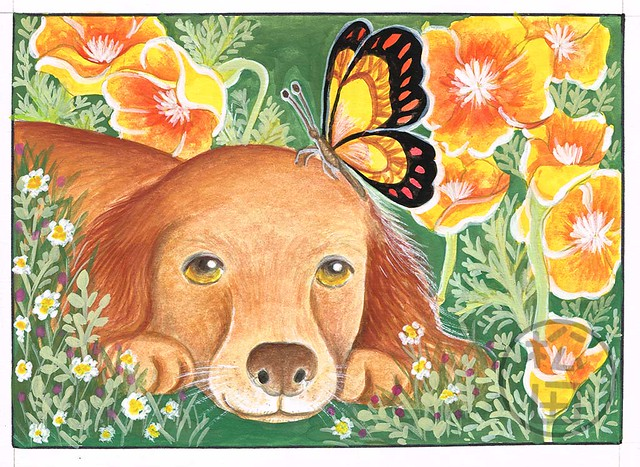 Irish Setter with butterfly and flowers