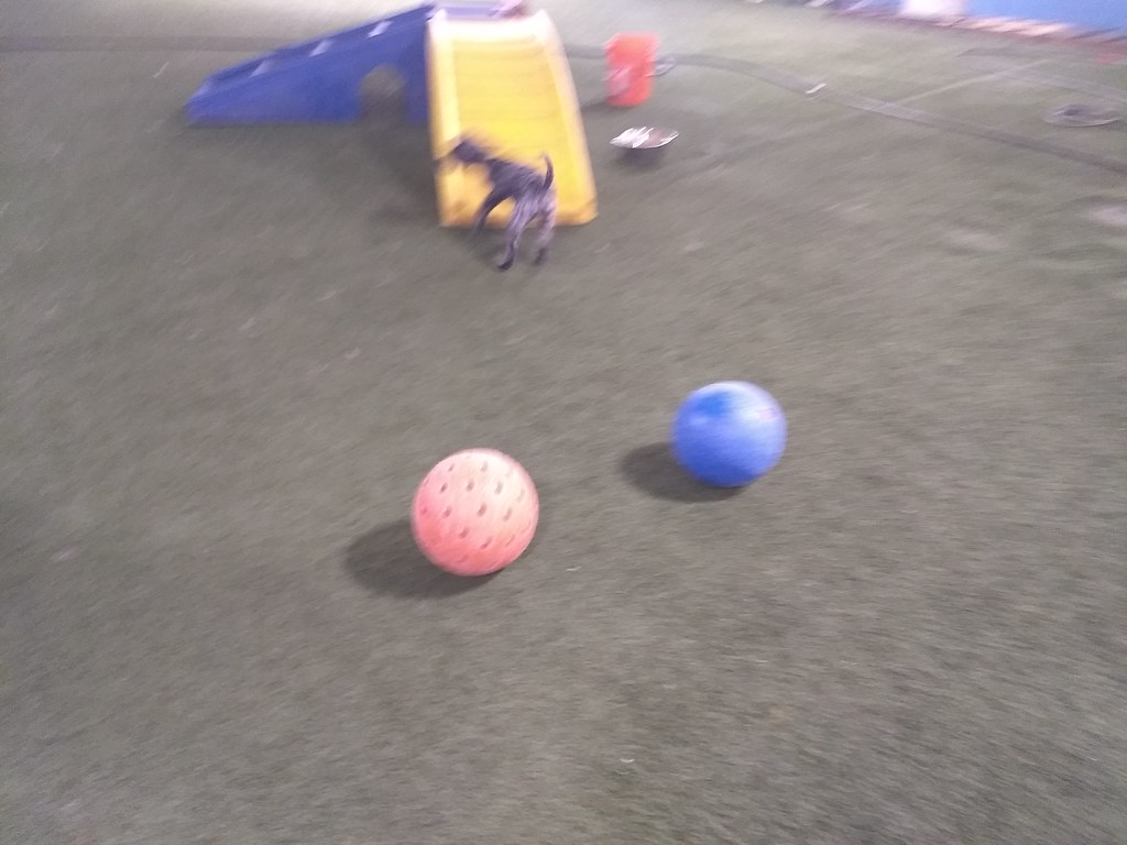 06-21-18 Indestruct-o-ball Play :D