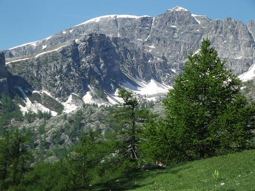 Valle des merveilles - and a marmot