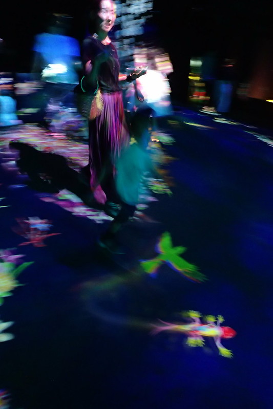 Mori building digital art. Teamlab borderless