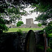IMG_3876 - Portchester Castle - Hampshire - 17.06.18