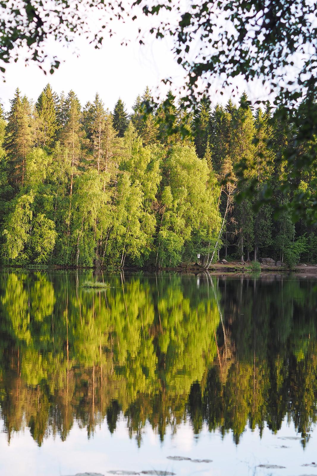halimasjärvi kaupungissa