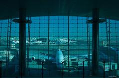 IMGP2315 Airbus A380-800