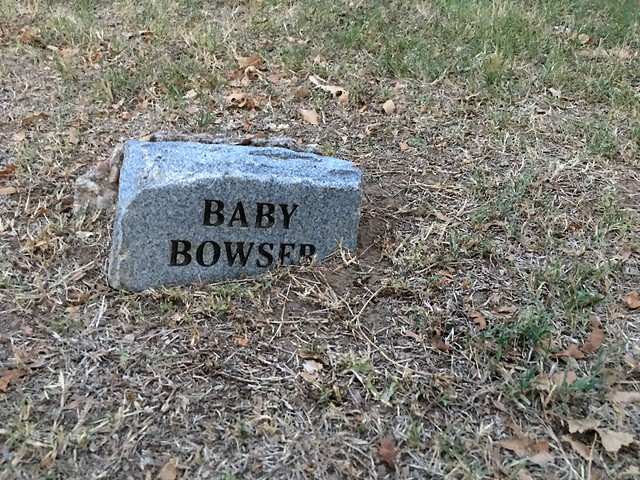 Poor Baby Bowser, rest in peace