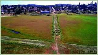 Centre Field at Panama Flats Park
