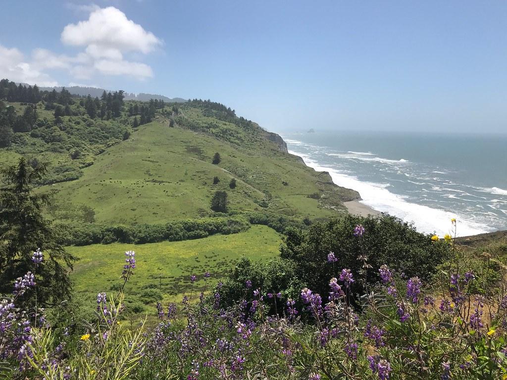 2018 Humboldt Bay 200K
