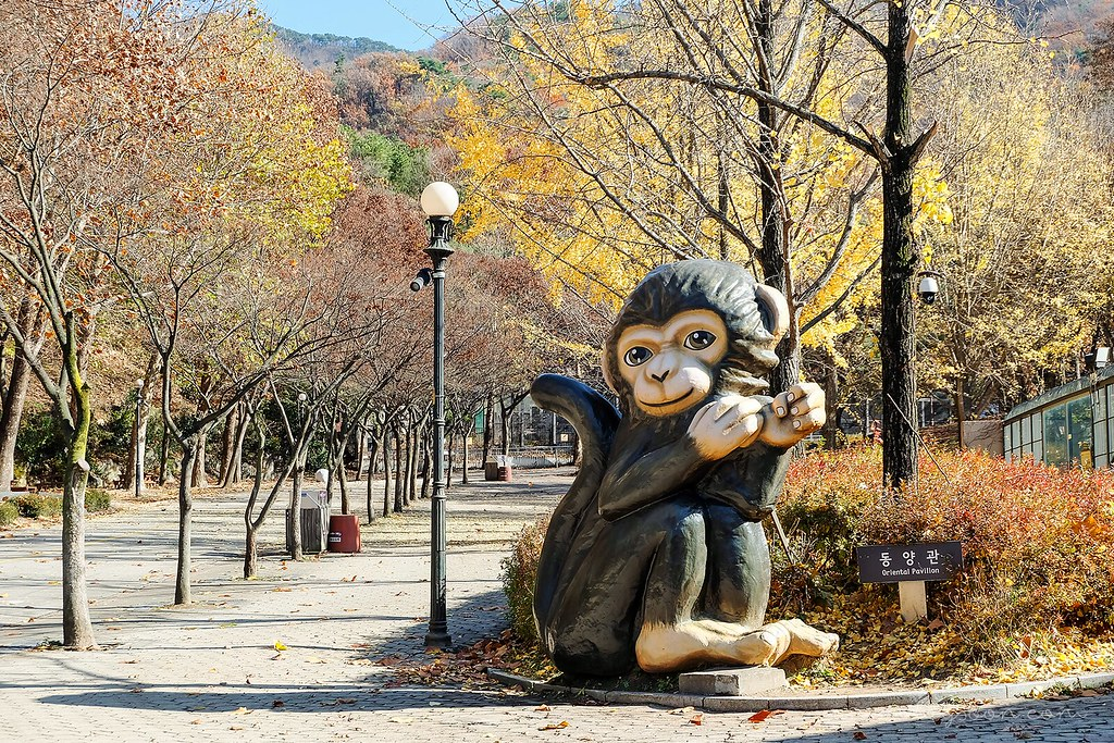 eco_park_seoul_autumn