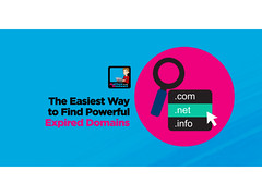 Learn How To Find Powerful Expired Domains Step By Step