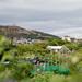 Scotland's Gardens Craigintinney Telferton July 2018 -1