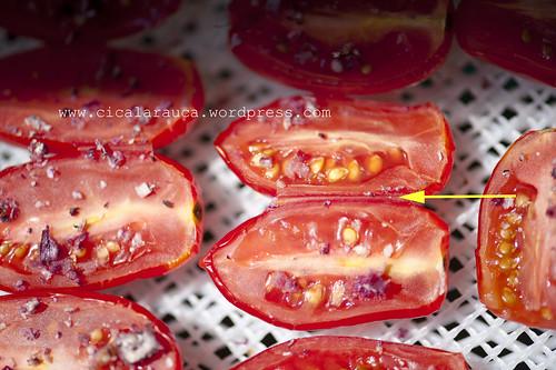 Pomodori campani chiappe :)