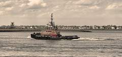 Tug Justice in Harbor