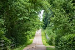 Greenway Corridor 7/14/18