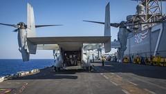 Osprey getting ready to take-off