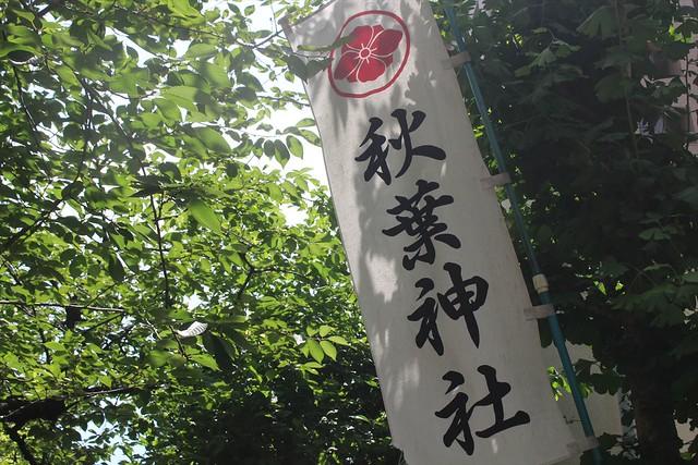 akibajinja004