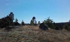 Askarp Sten