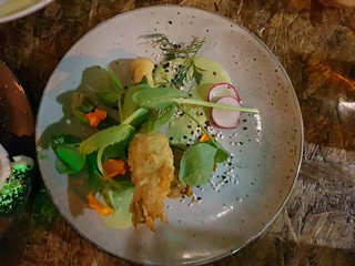 Stuffed Zucchini Flowers at Greenhouse South Brisbane