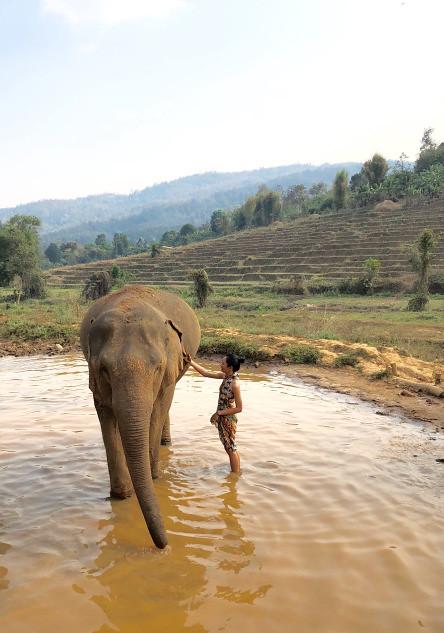Elephant and Sarah