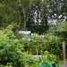 Scotland's Gardens Craigintinney Telferton July 2018 -8