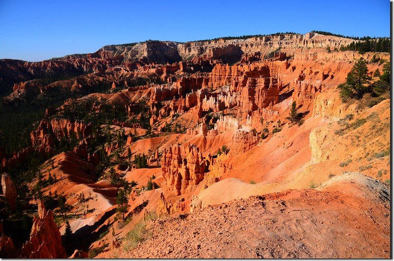 Rim Trail, Bryce Canyon (5)