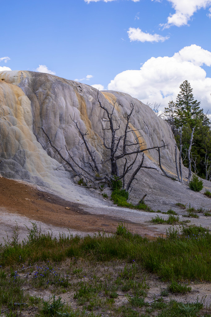07.03. Yellowstone National Park