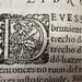 1613 Inhabited letter D