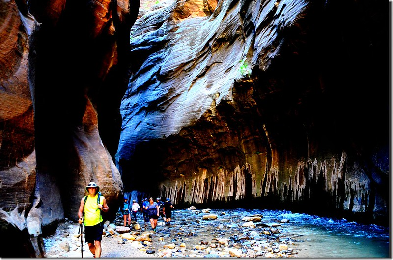 The Narrows, Zion National Park (30)